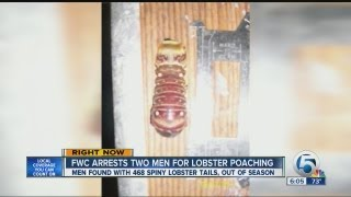 FWC arrests two men for Lobster poaching