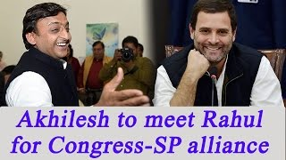 UP Election 2017  Akhilesh Yadav To Meet Rahul Gandhi For CongSP Alliance Sakshi TV