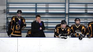 Массовая драка в детском хоккее: причины и последствия