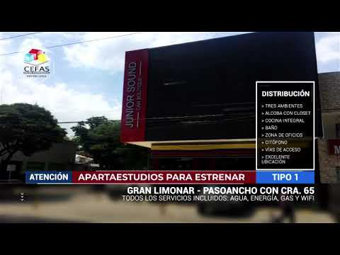 Apartaestudios, Alquiler, Gran Limonar - $850.000