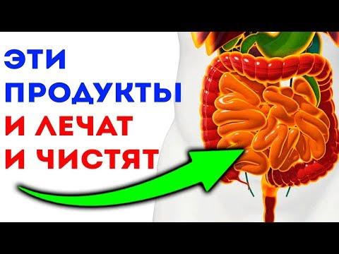 6 ВОЛШЕБНЫХ ПРОДУКТОВ для кишечника, ЖКТ и для здоровья желудка
