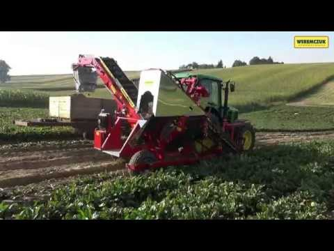 Weremczuk FMR Möhrenroder / Carrot harvester / Kombajn do warzyw