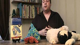Dog Training - How To Be Your Dog's Alpha