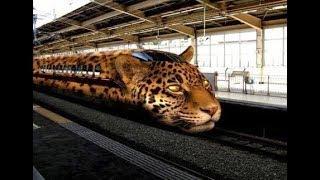 Japan technology.  Japan trains.  Indian hacker