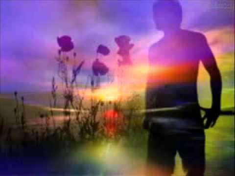 Roberto Carlos - A distância