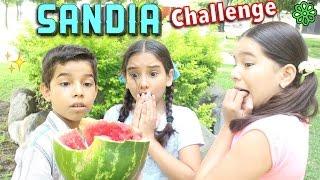 SAND�A CHALLENGE ♥� - Gibby