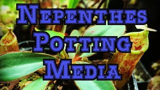 Nepenthes carnivorous plant media 101: Whats the best media for me