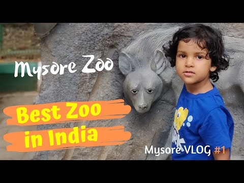 A Day at Mysore Zoo | Best Zoo in India