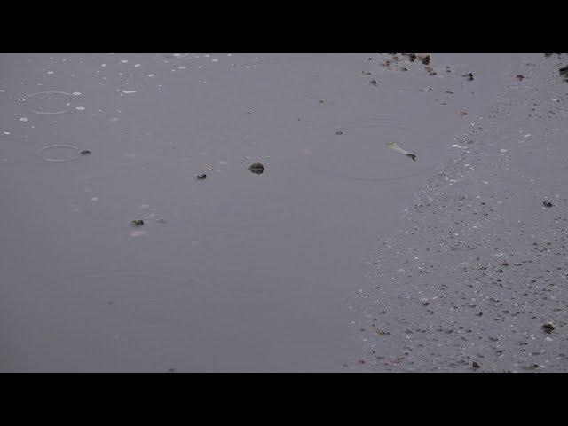 В Ангарске затопило улицу Рыночная