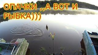 Где сегодня клюет рыба в кировской области