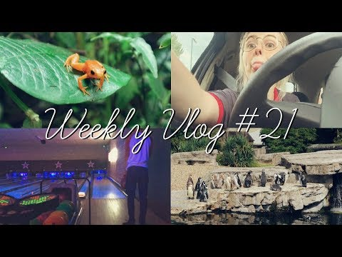 Chester Zoo, Bowling & Testing Carbon Coco | thisgirlcalledholly