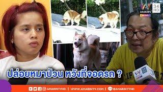 ทุบโต๊ะข่าว:หมากัดรถพังเละ!เจ้าของพร้อมชดใช้ เมินถูกแจ้งจับ แฉกลับหาเรื่อง หวังแย่งที่จอดรถ10/07/62