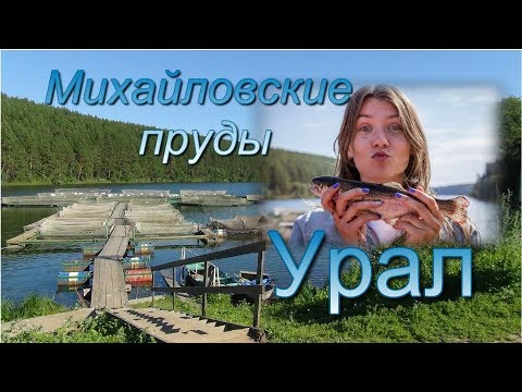 Урал  Михайловск  Необычная плотина и речная форель