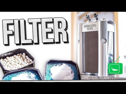 FILTER - FUNKTION & AUFBAU am AQUARIUM     Teil #1  FILTER   GarnelenTv