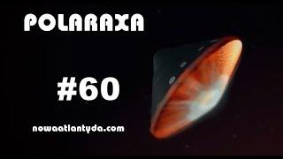 Polaraxa 60 – Mars: marzenia, wejrzenia, koty i polski Kret