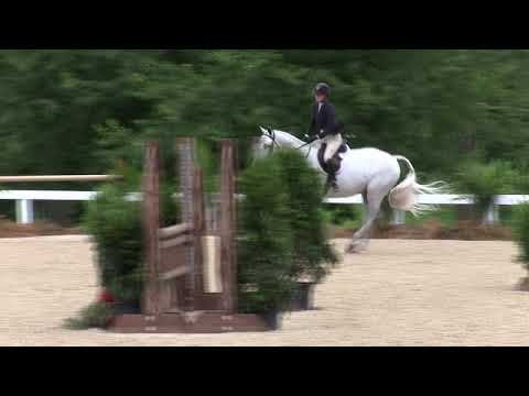 Video of BLUE MONDAY ridden by CHLOE E. WHITE from ShowNet!