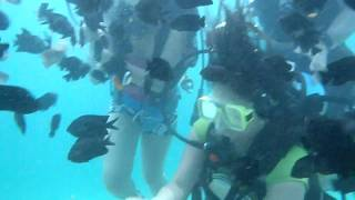 underwater escapade-( The other side of me )