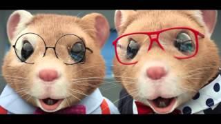 2015 Kia Soul EV Hamster Commercial Featuring Animals by Maroon 5  MTV VMAs