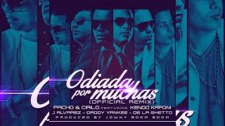 Odiadas Por Muchas (Audio) - Daddy Yankee (Video)