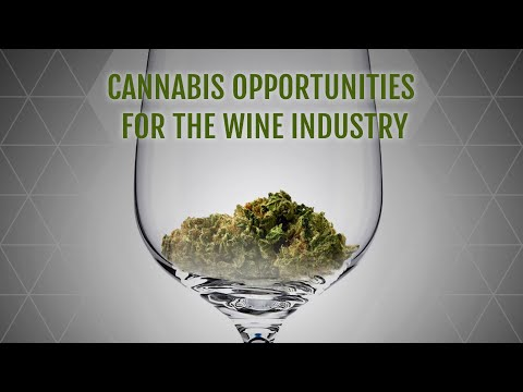 Cannabis Opportunities for the Wine Industry