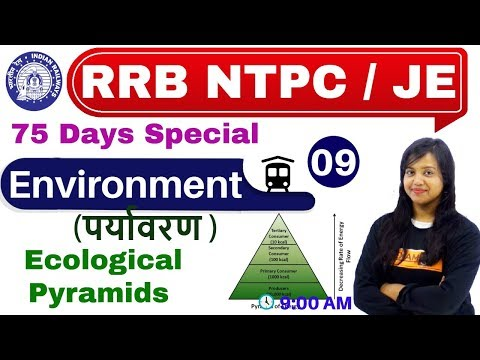 Class-09 ||RRB NTPC 75 Days Special/JE/||Environment (पर्यावरण ) || By Amrita Ma'am| Pyramid