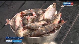 Любители зимней рыбалки собрались в Конаковском районе