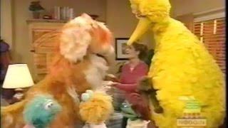 Sesame Street: Noisy Sleepover At Gina's (2000)