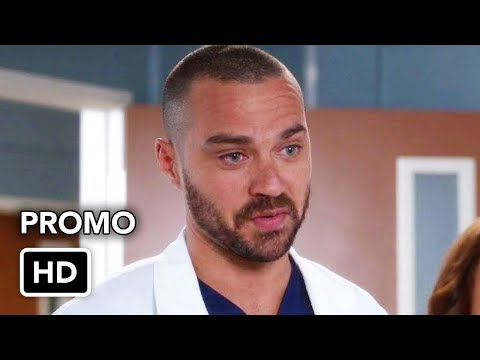 Grey's Anatomy 14.16 (Preview)