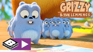 Grizzy I Lemingi | Najlepsze Miejsce W Domu | Boomerang