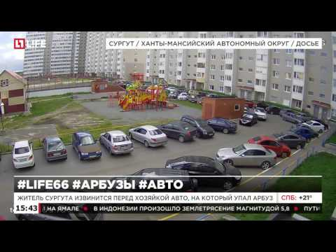 Житель Сургута извинился перед хозяйкой авто, на который упал арбуз