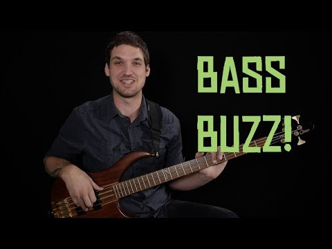 My Big New Beginner Course + Bass Lesson Project!!!