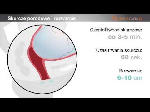Hemoroidy chlorowodorku papaweryny