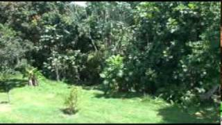 preview picture of video 'Homes Sale Rio Grande Puerto Rico Casas en Venta'