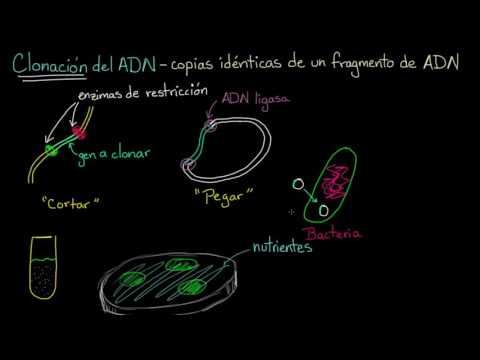 Inyección de insulina en el muslo