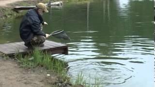 Воблер Калипсо, Calypso F6, ловля судака, рыбалка на судака, ужение судака, рыбалка, рыбная ловля,