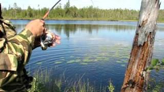 Смотреть онлайн Рыбалка щуки на спиннинг летом