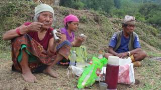 Eating food in agriculture farm in village ll Primitive Technology ll Rural life