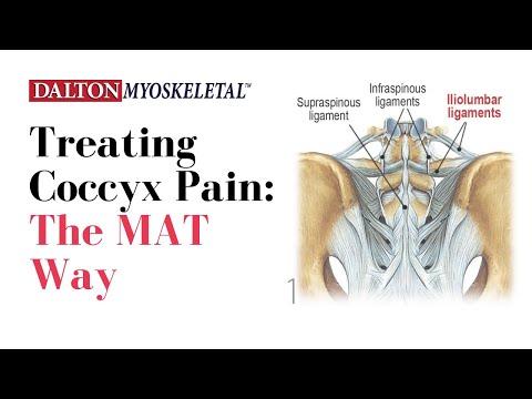 Schmerzen im Rücken links unten und Übelkeit