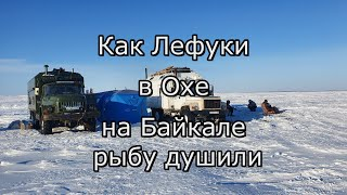 На что ловят корюшку во владивостоке 2020