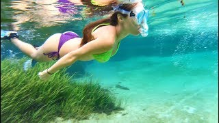 Download Youtube: Girl swimming with BIG BASS in the Rainbow River