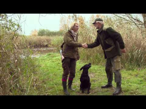 Putnu suņu apmācība Vācijā. Ir par ko domāt un no kā mācīties!!!