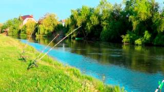 Рыбалка в темрюкском районе краснодарский край