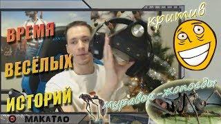 MakataO про критив и муравьёв-жопоедов 😄