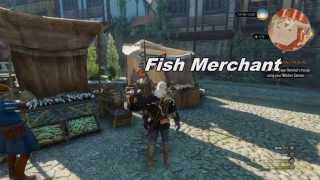 The Witcher 3 Wild Hunt - Unlimited Money Infinite Coin Exploit
