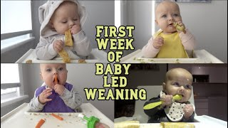 FIRST WEEK OF BABY LED WEANING | Time lapse