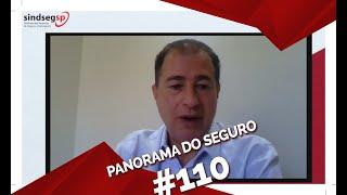 PANORAMA DO SEGURO COM FENACAP