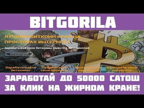 Bitgorila - Жирный кран + бесконечный бонус + сёрфинг!