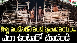most dangerous tribes in the world - मुफ्त ऑनलाइन
