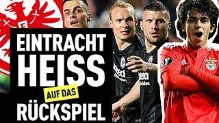 Eintracht Frankfurt Ist Noch Lange Nicht Raus!   FUSSBALL 2000 - Der Eintracht-Videopodcast