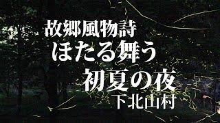 ホタルの舞・奈良県下北山村lightningbugJapan